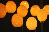 Mixed ostrich egg lights